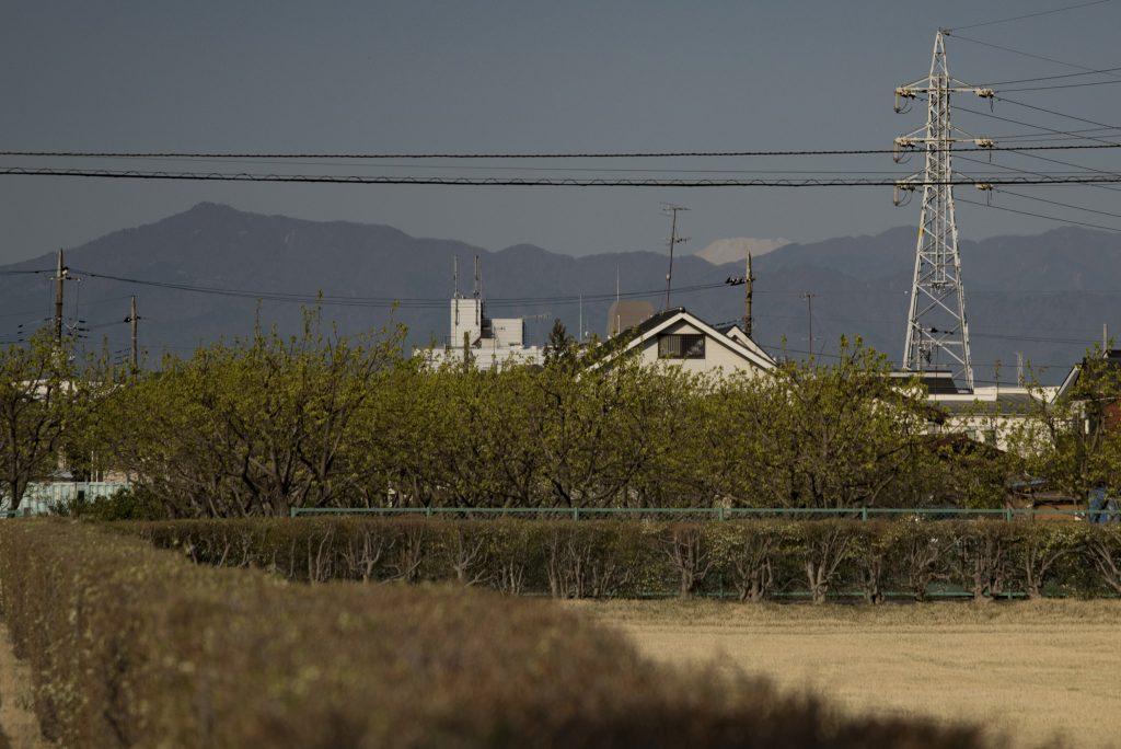 中央林間西1丁目 白い山頂をのぞかせる富士山