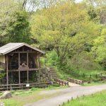 泉の森 2017年4月18日 新緑の中の水車小屋です