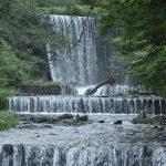 神奈川県秦野市滝沢園キャンプ場を流れる水無川の上流です