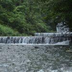 神奈川県秦野市滝沢園キャンプ場を流れる水無川です