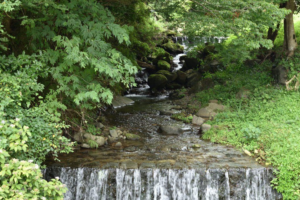 神奈川県伊勢原市大山こま参道横の川です
