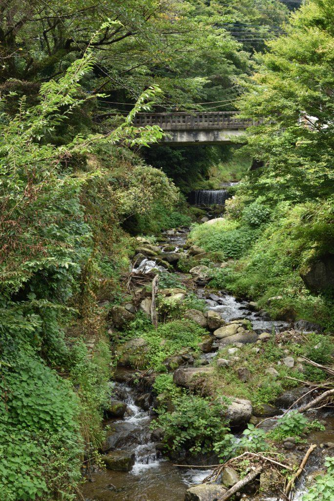 神奈川県伊勢原市大山こま参道横を流れる川です